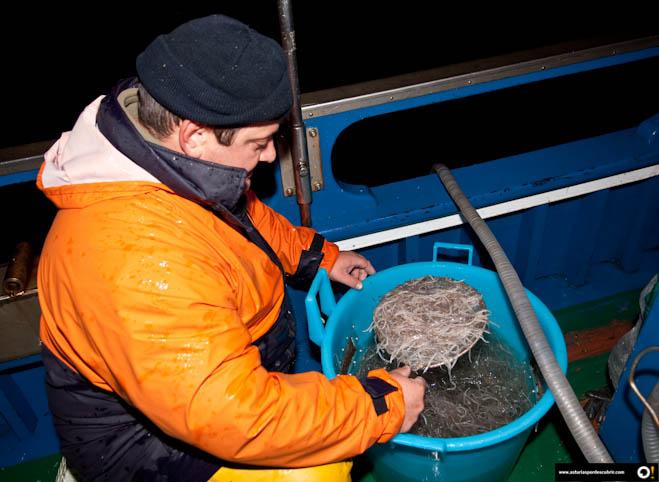 pesca-angula-e541e2