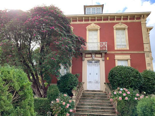 El rododendro en el jardín de Villa Rosario en Villapedre, Navia, Asturias