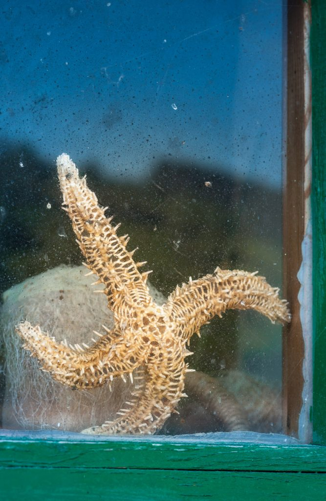 Estrella de mar en la ventana de una casa de pescadores en Tazones, Asturias