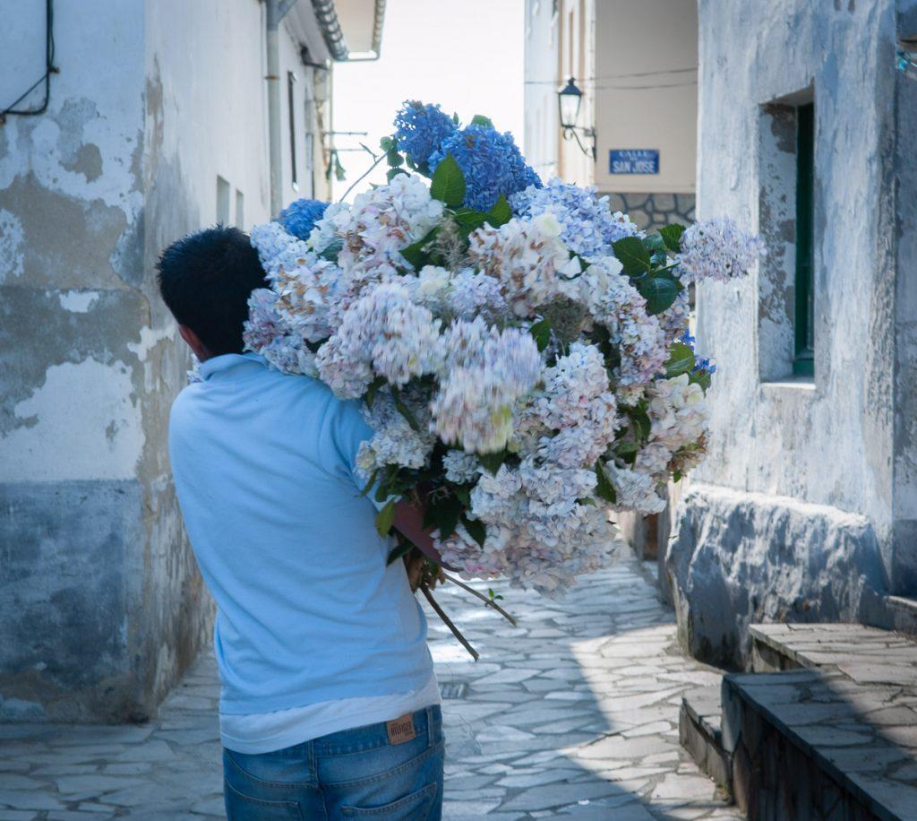 Ramo de hortensias para la celebración de la Fiesta del Carmen en Tapia de Casariego