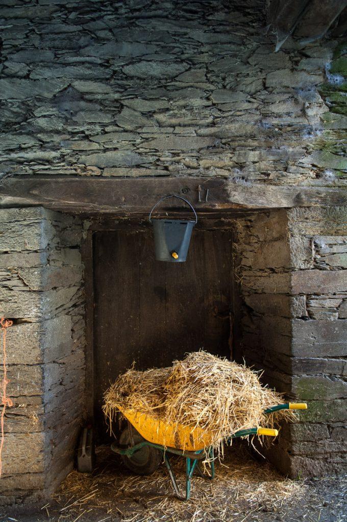Paja para alimentar los animales en el pueblo de Argul, Pesoz