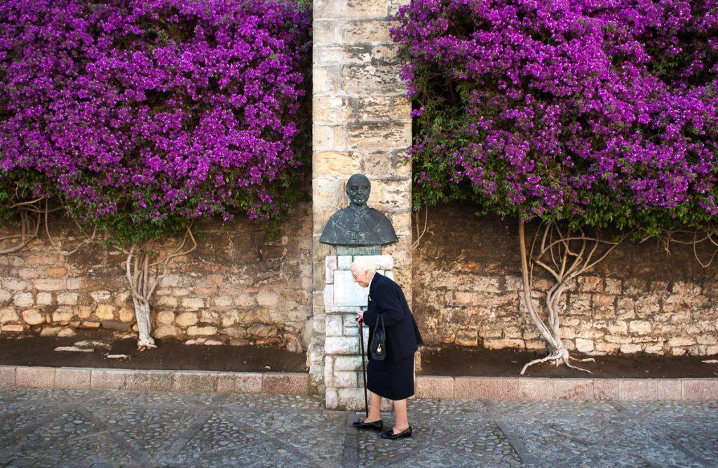 Buganvillas en los muros de la Colegiata de Llanes, Asturias
