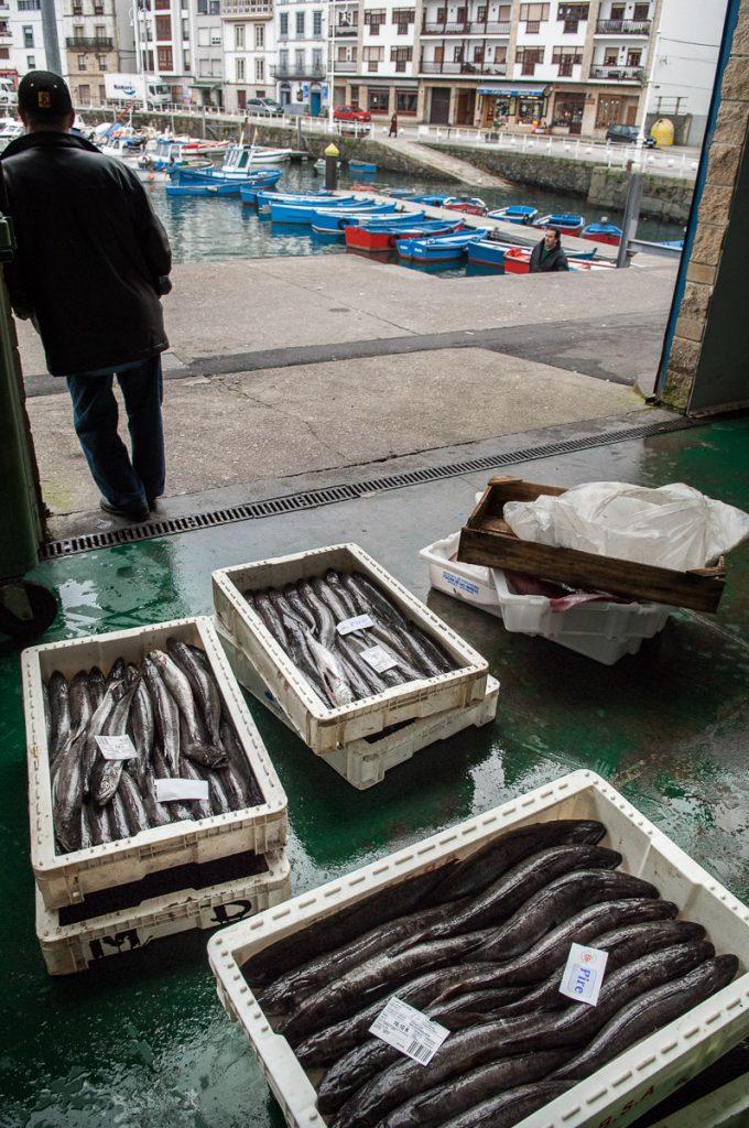 Cajas de pescado a la entrada de la rula de Luarca en Asturias
