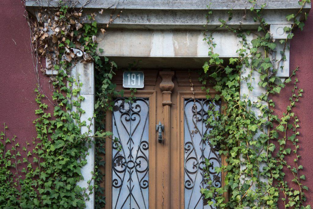 Puerta señorial cubierta de hiedra en Pravia