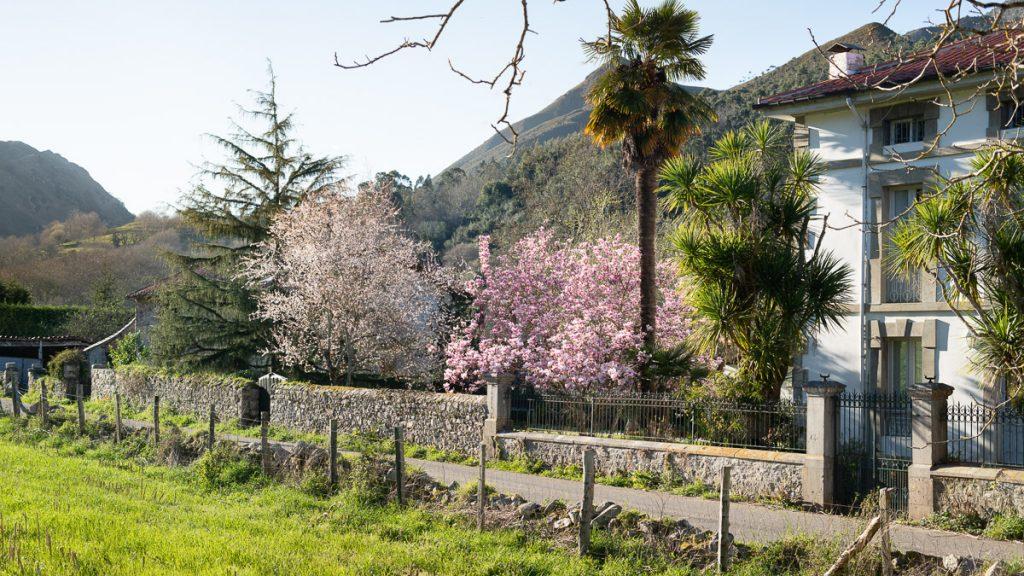 Paisaje de Riocaliente, pueblo en el Oriente de Asturias